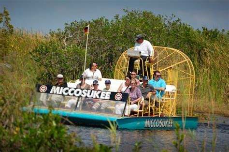 Embark On a Journey Into The Everglades | Must Do Visitor