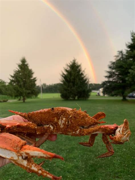 Crabs Out Back - Home - Rising Sun, Maryland - Menu