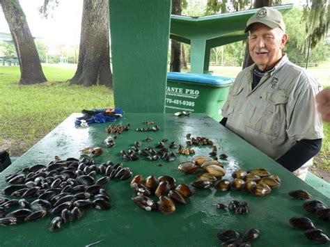 Freshwater Mussel May Be Placed Under Endangered Species