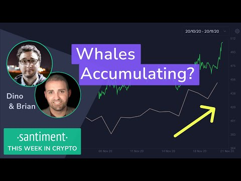 Waves (WAVES) Review - Crypto Coin Judge