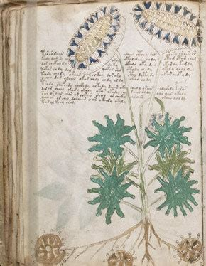 The Unread: The Mystery of the Voynich Manuscript | The