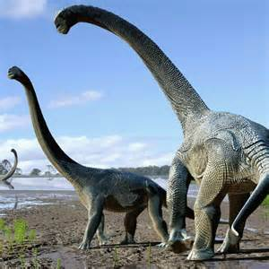 New 'titanic' Aussie dinosaur stretched half the length of