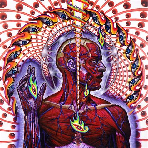Tool - Lateralus CD – Steamboat