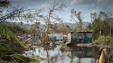 The Wages of Cyclone Pam   The New Yorker