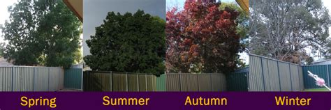 The Changing Seasons   Geography for kids   The K8 School